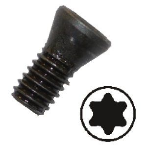 Torx clamping screws